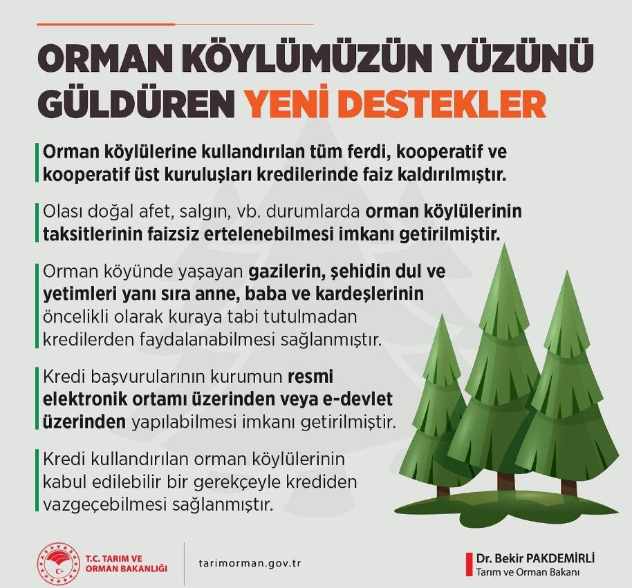 Orman Köy Projesi