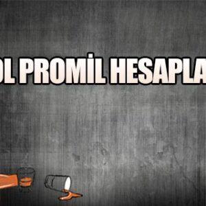 Alkol Promil Hesaplama 2021 (1 Bira Kaç Promil)