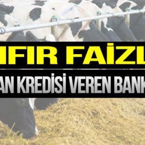 En Uygun Hayvan Kredisi Veren Bankalar 2021 (FAİZSİZ)