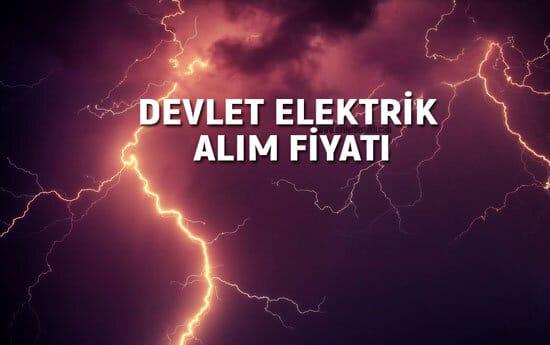 Devlete Elektrik Satmak 2021 (Güncel Alım Fiyatı)