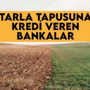Tarla Tapusuna Kredi Veren Bankalar 2021 (ÇİFTÇİLERE MÜJDE)