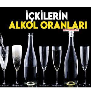 İçkilerin Alkol Oranları (Tüm İçkiler)